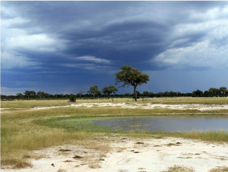 Dramatic storm clouds at the end of the rainy season in Hwange National Park