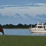 The Lady Jacqueline cruises past an elephant on Lake Kariba, Zimbabwe. Picture: Tony Park