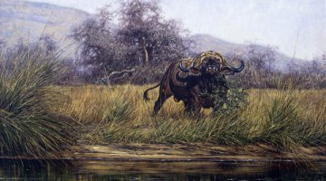 Cape Buffalo oil painting by Larry Norton