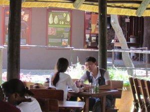 Rainforest restaurant and interpretive centre