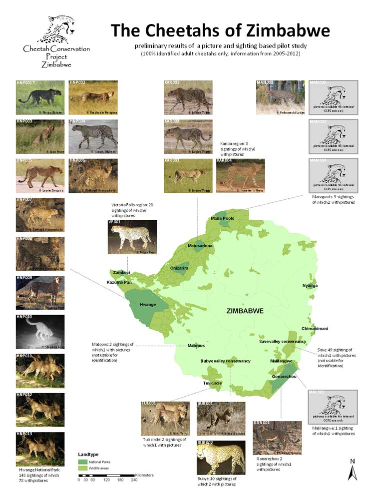 Map showing cheetah distribution in Zimbabwe