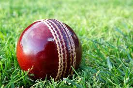brendan taylor, zimbabwe cricket