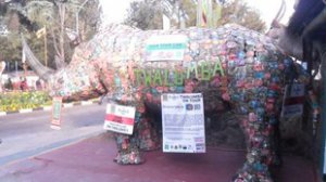 Twalumba, the rhino made of cans