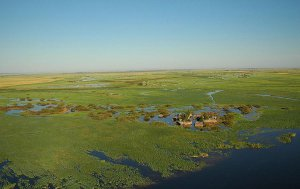 Caprivi region floodplains