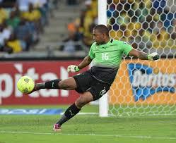 COSAFA Cup 2013