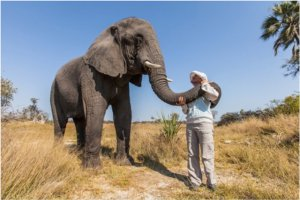 Shy Morula is named after an African fruit tree and blossoms when showered with love