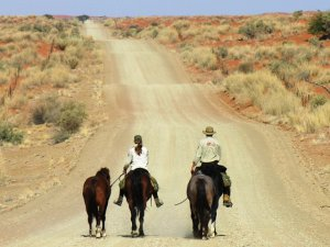 Rhino Knights on horseback