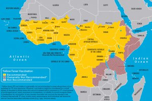 map3-18-yellow-fever-vaccine-recommendation-in-africa-2010-large