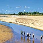 Walking Safaris Zambia