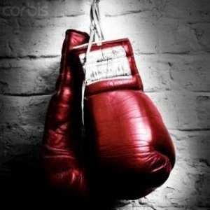 Boxing in zimbabwe