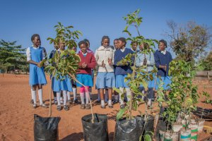 School girls from Libala School in Livingstone present their tree song before the planting day begins.