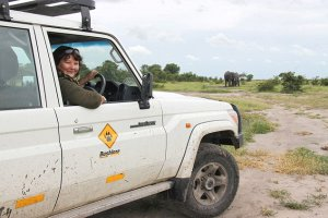 Taking control - Wendy Gomersall closes in on some elephants in Botswana