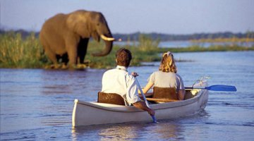 Canoe Safari's on the mighty Zambezi River