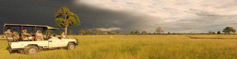 Game Drive at Hwange National Park