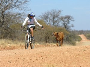 Isabel rides through Zimbabwe