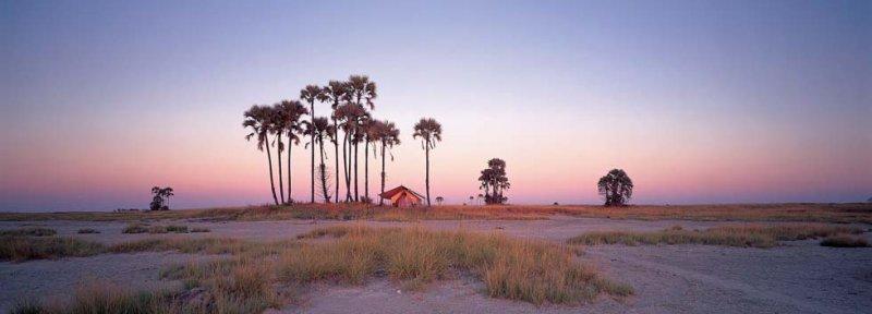 Makgadikgadi Pans with San Camp beneath the palm trees