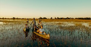The Makoro, the delta's transport