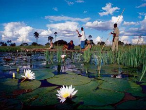 Canoeing through the Okavango Delta
