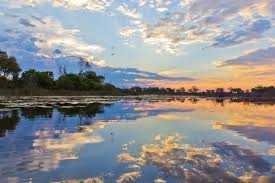 Okavango Delta at sunset