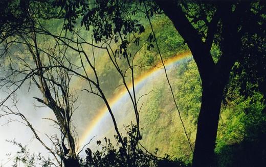 Victoria Falls 7