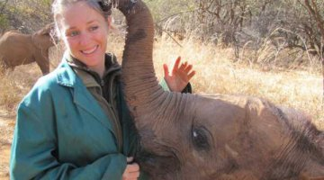 Zambezi—one of the orphan elephants at Elephant Orphanage Project in Zambia—playing with Rachael Murton, EOP's project manager
