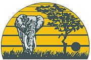 African Elephant Summit