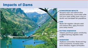 Negatives of building a dam