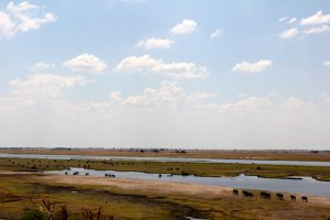 Chobe River in the dry season