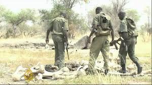 antipoaching patrol