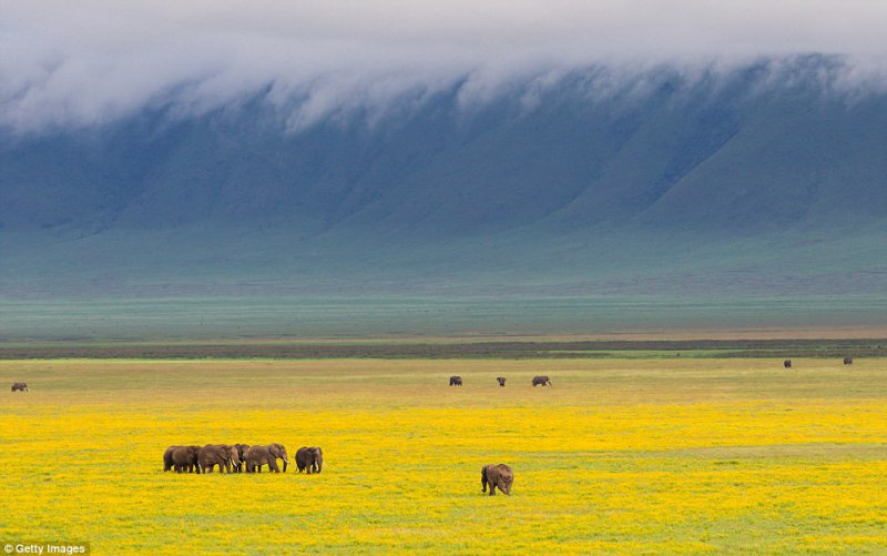 Ngorongoro Crater, Tanzania: At 610m deep and 260sq-km, this is the largest unflooded caldera in the world. A blue-green vision from above, it's a haven for endangered wildlife and maasai livestock