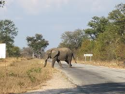 kariba roads