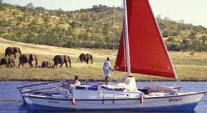 sail with elephants photo