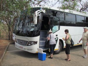 blue arrow bus