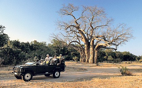 Safari at Mana Pools (Alamy)