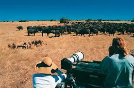 filming in botswana