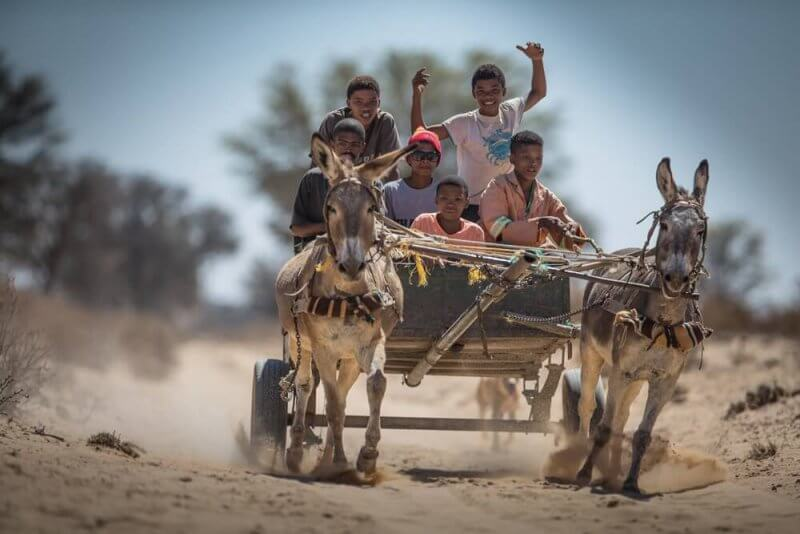 Passing more donkey carts than cars while manoeuvring along some wild stretches on the way to Sossusvlei ©James Suter